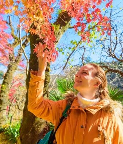 日本の紅葉を楽しむ外国人