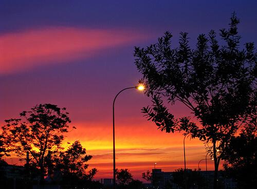 夕暮れを照らす街灯