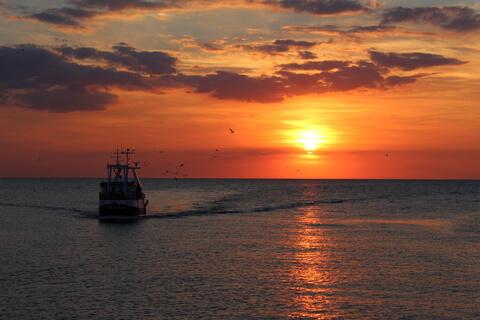 夕焼けの海を進む船