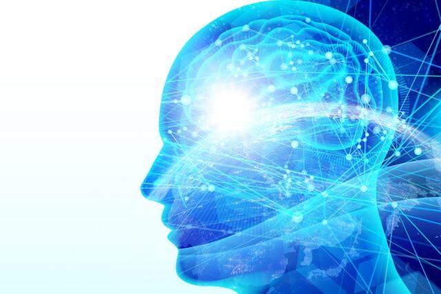 脳の可塑性を示した図