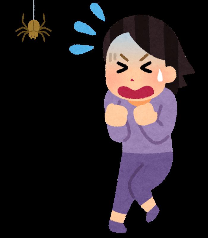 蜘蛛を怖がる女性のイメージ