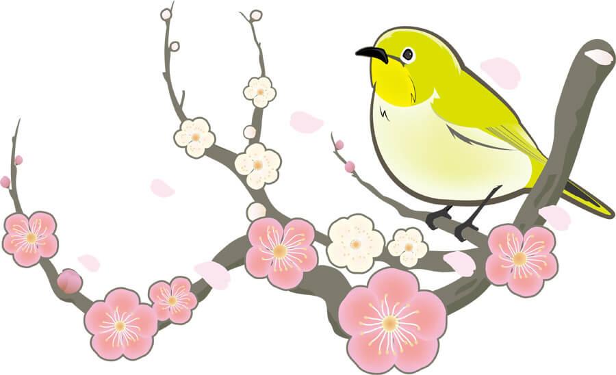 花が咲く枝にとまる鳥