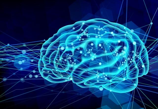 頭脳明晰な脳内