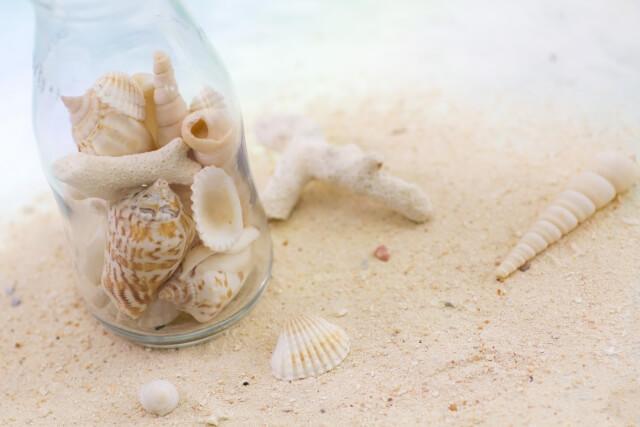 綺麗なビンの中に入った綺麗な貝殻